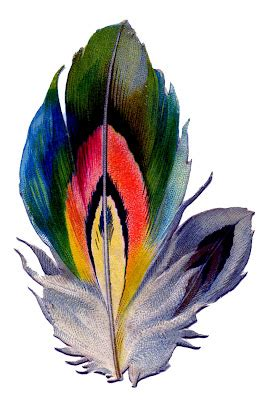 Vintage Graphic - Colorful Feather - The Graphics Fairy