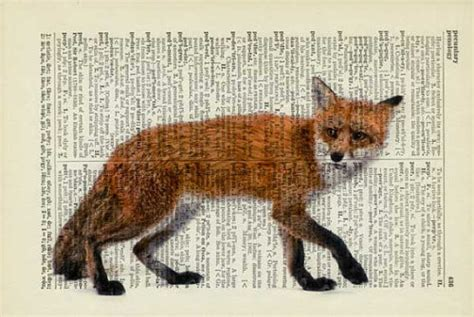 1000 Drawings ! - Red fox by Jean Cody