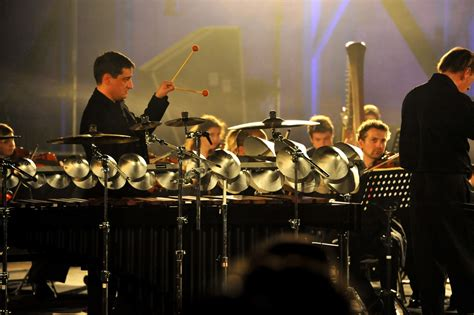 Laurent Mariusse   Aluphone - Tuned percussion for