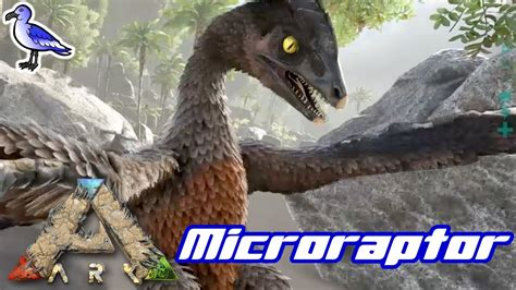 HOW TO TAME A MICRORAPTOR IN ARK - YouTube