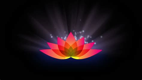 Lotus Flower with Motion Light Stock Footage Video (100%
