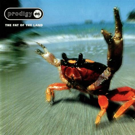 The Void-Go-Round: The Prodigy-The Fat of the Land